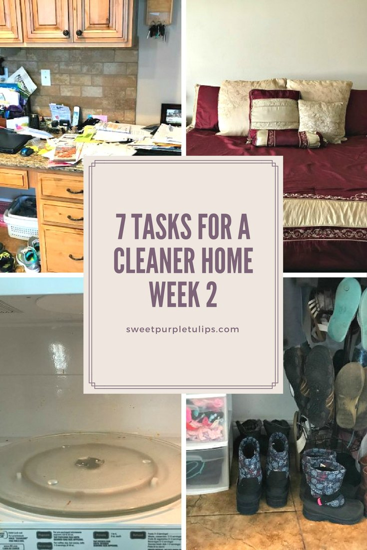 7 Tasks for a Cleaner Home: Week 2